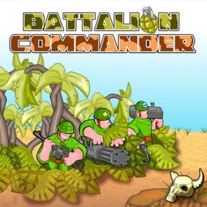 Battalion Commander
